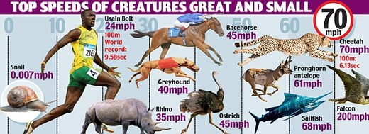 A Runner That Makes Usain Bolt's 100-Meter Sprint Seem ...