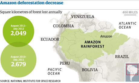 Amazon rainforest deforestation shows positive trends kids news