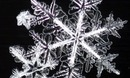 Thumb_snowflake-001