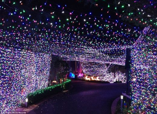 Australian Family Sets New Record For Christmas Light Display Kids ...:In 2011, the thousands of people that visited helped raise $72,000 USD for  various children's charities. David is hoping that things will be similar,  ...,Lighting